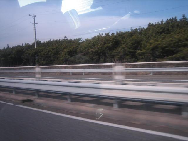 20090309-03.jpg