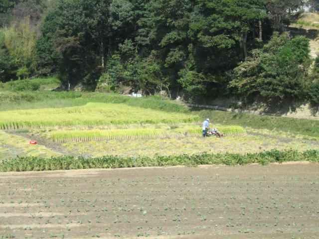 20091019-03.jpg