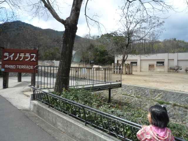 20100419-07.jpg