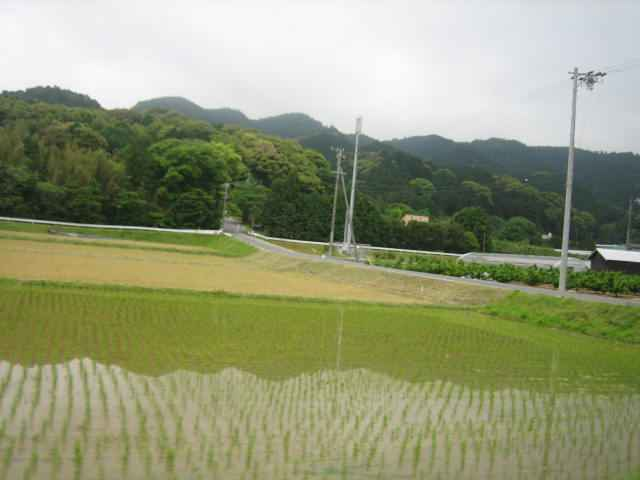 20110523-02.JPG